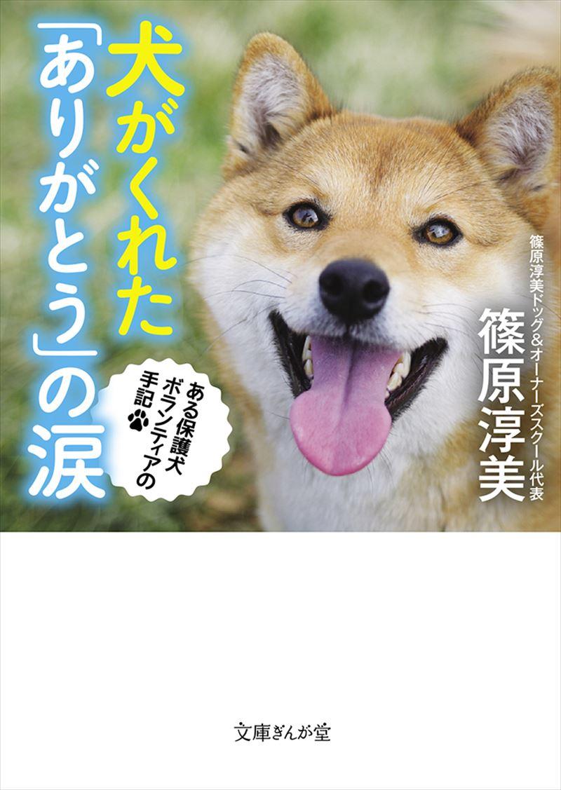 犬がくれた「ありがとう」の涙 ある保護犬ボランティアの手記